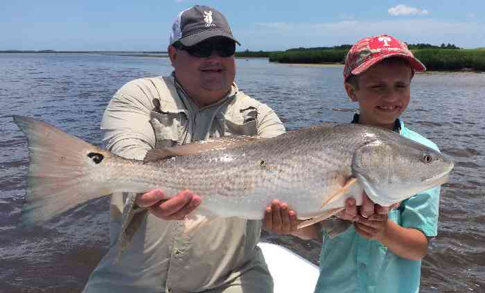 Summer fishing report myrtle beach guide service fishing for Myrtle beach fishing report